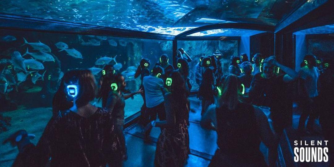 Silent Disco At Sydney Aquarium